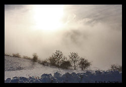 Copyright - Christophe Hierle - http://www.photos-lozere.fr/